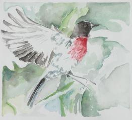 Bird, a sweet little watercolour, 25.5 x 23.5 cm.